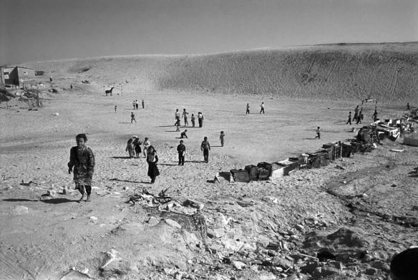 Palestinians Chronicles by David Verberckt