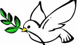 golub-mira